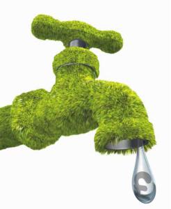 green tap saving
